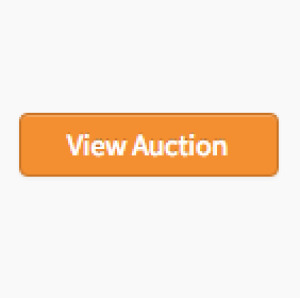 PLASTER AUCTION