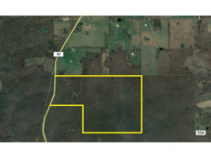 200 Acres Hunting/Timberland ~ Oregon County Missouri