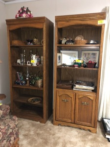 2 Bookcases (items in bookshelves NOT included)