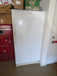 19 cu ft Kenmore Frostless Freezer