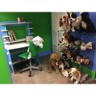 Puppy Kennel & Vet Clinic Office- see description